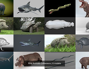 3D model Wild Animals Collections