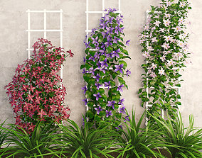3D asset rigged Wall flowers