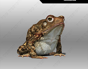 3D model Toad Animated