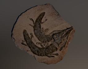 Realistic Crocodile Fossil 3D model