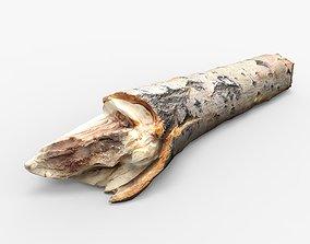 3D model Driftwood
