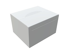 3D Package blank white closed large mock up
