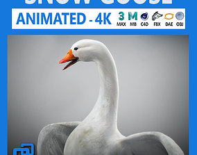 3D model Animated Snow Goose