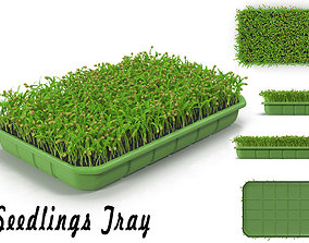 3D model Seedlings Tray 1