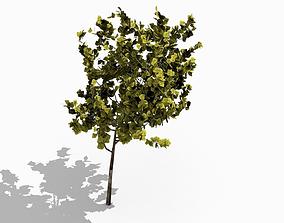 tree2 low-poly 3D asset