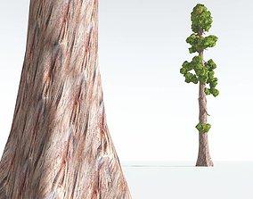 VR / AR ready EVERYPlant Coastal Redwood Cartoon 06 --12