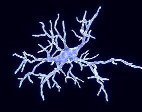 Microglial cell 3D