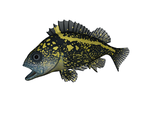 3D printable model Rockfish