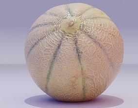 3D asset VR / AR ready PBR Melon