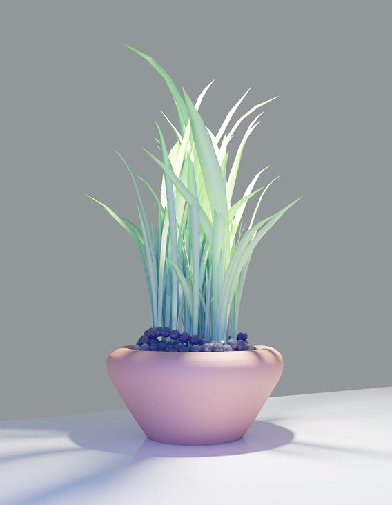 Buch Plan Pot Vase