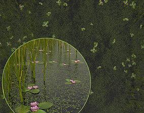 3D set of marsh vegetation