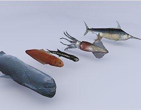 Sea Fish 3D asset