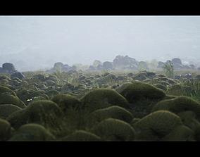 Iceland Environment 3D model VR / AR ready
