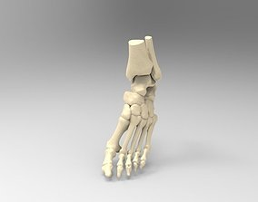 3D printable model Real Size Human Left Foot