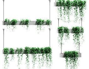3D Plants in hanging flower pots - 5 models