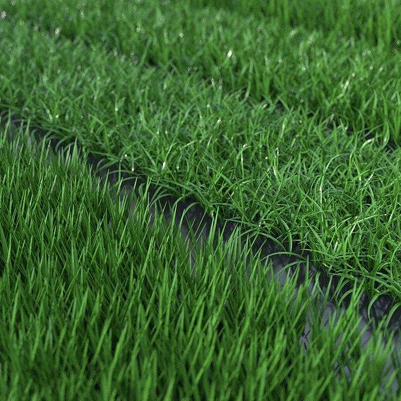 Realistic grass