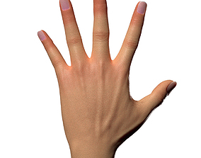 Female Hand 3D asset