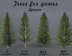 Spruce 3D asset