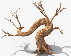 3D model Dry Tree 02
