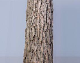 3D model Tree log 04