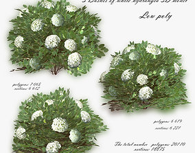 Bush Hydrangea White low poly 3D model realtime