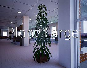 3D model Plant Large SHC Quick Office LM