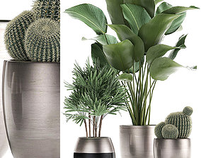 3D Decorative Plants in a pot for the interior 688