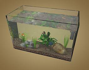 Aquarium 3D asset