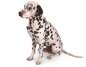3D asset low-poly Dalmatian Dog Sitting