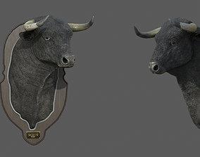 3D asset Spanish bull head trophy