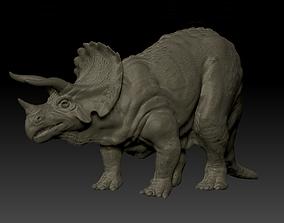 3D jurassic Triceratops dinosaur