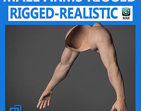 3D Adult Male Arms and Hands Rigged