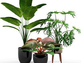 Plant pot 3D pot-plant