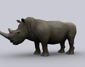 3D asset RHINOCEROS GAME READY ANIMATED MODEL