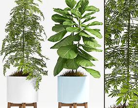 Decorative plant set-70 3D model