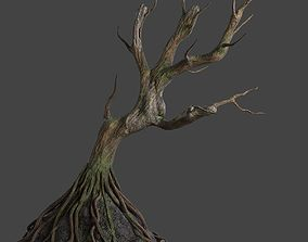 treehouse Old tree 3D