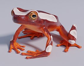 Clown Tree Frog - Animated 3D asset