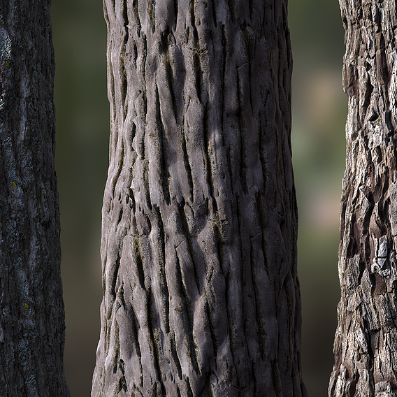 Tree Bark Seamless 01