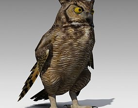 3D asset Owl Animated