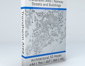 3D Trondheim Area Streets and Buildings