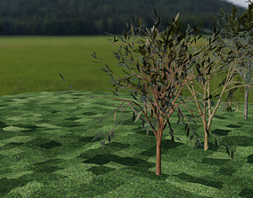 low-poly three tree models