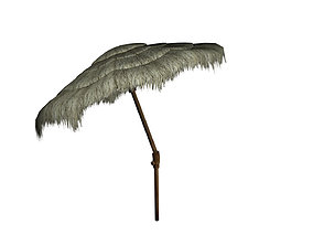 3D model Tiki Beach Umbrella