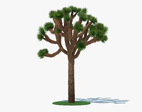 3D Joshua Tree