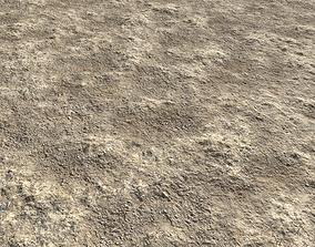 Rough sandy terrain 9 PBR 3D model