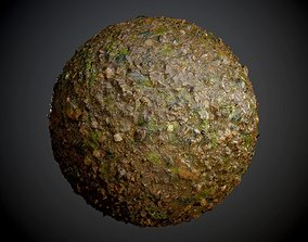 3D model Muddy Swamp Leaves Ground Seamless PBR Texture
