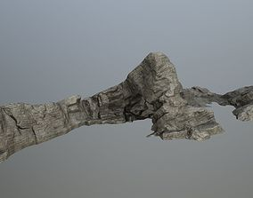 other rocks 3D asset game-ready