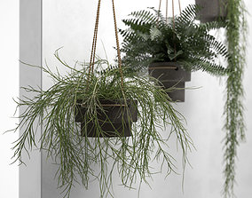 Hanging Pots with Plants 3D model