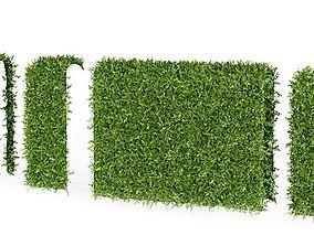 Green Hedge Pieces 3D model