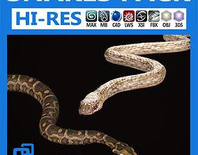 3D model Pack - Snakes