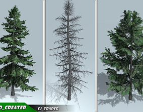 VR / AR ready Alaska Tree Pack 3D Model